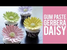 How to make Gum Paste Gerbera Daisies - YouTube