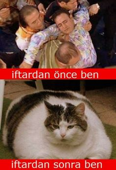 İftardan önce ben, iftardan sonra ben. Funny Happy, Funny Laugh, Fowl Language Comics, Comedy Pictures, Minecraft Pictures, Walmart Funny, Funny Sherlock, Romantic Songs Video, Funny Times