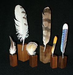 bird feathers by Gary Yoder - hand carved from wood and unbelievably detailed!