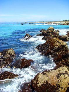Near Bird Rock of the Starboard Trail, Pebble Beach, Calfornia. #beach #travel