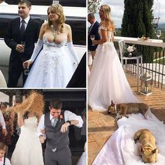 Not every wedding has a fairytale ending. Or beginning. Or even middle. In fact some weddings go flying right off the rails from the beginning and they don't get any better from there. Check out the wedding fails that nobody will be able to forget. Funny Laugh, Stupid Funny, Hilarious, Wedding Fail, Wedding Ideas, Funny Comic Strips, Funny Memes, Jokes, Funny Videos