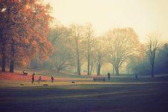 autumn autumn autumn !