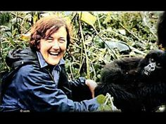 ▶ Dian Fossey y gorilas - LOVE THIS. LOVE THE SONG TOO!!!