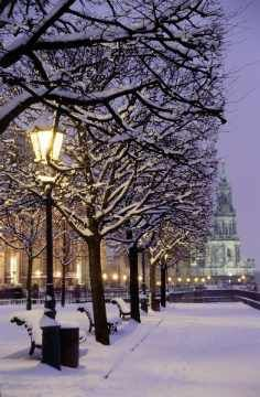 Dresden, Germany. Does this look like Christmas or what?