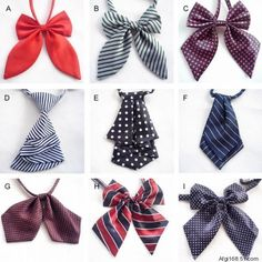 [FOB] Wholesale Womens Fashion Polyester Silk Bow Tie / Ladies Coloful Bow Tie 200pcs/lot (SE-20F)