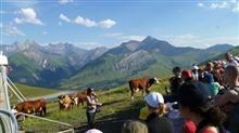 Alpages en fête - Maurienne Tourisme : L'agenda en Maurienne