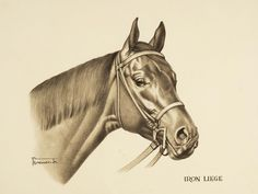 'IRON LIEGE' & 'BOLD RULER' (a pair) | The Sporting Art Auction