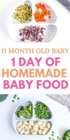How to make baby food for 11 month old? With an easy to follow schedule with healthy baby food ideas for breakfast and lunch and dinner. #guide #chart #recipes