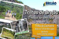 INFORMATIVO DE BREJÃO: Trilha da Cachoeira. Venha caminha junto a naturez...