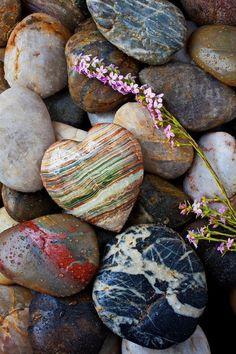 pretty rocks and one very special one: heart shaped - Herz - Heart In Nature, Heart Art, Beltane, Mabon, Samhain, Heart Shaped Rocks, Love Rocks, Beautiful Rocks, Beautiful Hearts