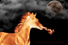 Fire horse Fire Art, Animation, Horses, Fantasy, Bait, Water, Animals, Tattoo, Artists