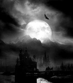 Castle bat  #Castle #Bat