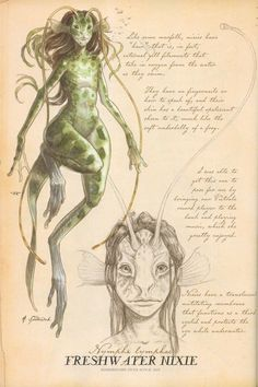 """""""Freshwater Nixie"""" from """"Arthur Spiderwick's Field Guide to the Fantastical World Around You"""" illustration by Tony DiTerlizzi."""