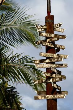 I want to make one of these for my garden, with signs for Cape Cod, Martha's Vineyard, San Diego, Mendocino, etc, etc <3