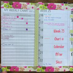 Week 25 Chart and Calendar After Shot #midoritravelersnotebook #mtn #diyfish #lifemapping