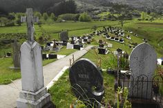Cemetery in Panguru Cemetery, Farmer, New Zealand, The Past, History, Maori, House, History Books, Historia