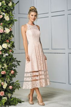 Jasmine Bridal is home to 8 separate designer wedding labels as well as two of our own line. Jasmine is the go to choice for wedding and special event dresses. Mob Dresses, Dressy Dresses, Event Dresses, Bridal Dresses, Occasion Dresses, Lace Tea Length Dress, Tea Length Bridesmaid Dresses, Tea Length Dresses, Mother Of Bride Outfits