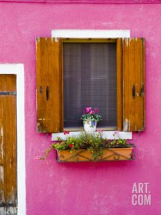 Pot Plant and Vividly Painted Facade, Burano Photographic Print by Diana Mayfield at Art.com