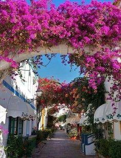 It's a beautiful world Bougainvillea in Puerto de Mogán, Gran Canaria / Spain Places Around The World, The Places Youll Go, Places To See, Around The Worlds, Tenerife, Wonderful Places, Beautiful Places, Canario, Canary Islands