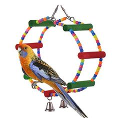 Rainbow Colorful Wooden Pet Ladder Bird Toys Swing Exercise Hamster Parrot Cockatoo Macaw African Greys Cockatiel Lovebird Conure Budgies Chew Toy Birdcage Toy
