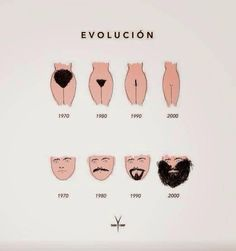 Hair evolution