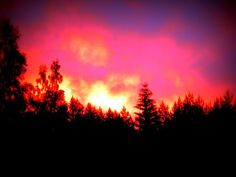 I woke up in early morning at summer cottage, in Finland.It looks like trees are in fire. The sun was so red and strong behind the trees. It was awesome! I run back to inside and took my camera. Photography by Päivi Sorri