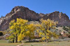 Fall in Colorado is beautiful!