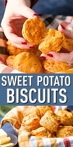 antipasto squares Old-Fashioned Sweet Potato Biscuits: these were SO EASY to make and they came out so fluffy and light! Sweet Potato Biscuits, Sweet Potato Recipes, Sweet Potato Scone Recipe, Fried Biscuits, Sweet Potato Buns, Buttermilk Biscuits, Biscuit Bread, Biscuit Recipe, Beignets