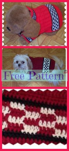 With the holidays so close and everyone excited, don't leave your dog out on the fun! Why not make him a Crocheted Dog Sweater for a great Christmas Crochet Dog Sweater Free Pattern, Crochet Baby Cardigan, Baby Blanket Crochet, Free Crochet, Crochet Patterns, Dog Beanie, Crochet Dog Clothes, Christmas Crochet Blanket, Animal Sweater