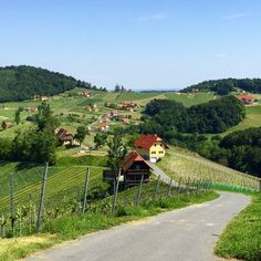 Discovering the South Styrian Wine Road #AustrianTime