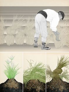 Arrancar la xufa / Arrancar la chufa Valencia, Arrancar, Madrid, Natural, Museum, Climate Change, Vegetable Garden, Nature, Au Natural