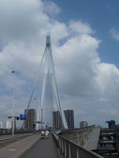 The bridge in Rotterdam