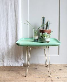 green thumb   cacti + succulents on a DIY mint tray table