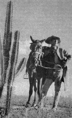 Vaqueiro nordestino em vestindo trajes típicos de couro