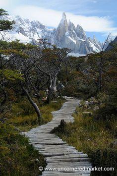 Trekking hacia El Chaltén, Argentina