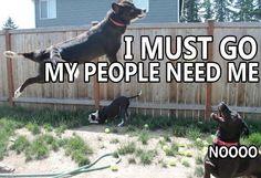 Hahahahahaha I wish I could fly!
