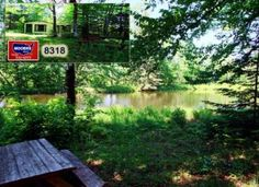 Cheap Maine Waterfront Wooded Land! Live Off Grid, Build Homestead Here! $40's! info@mooersrealty.com 207.532.6573