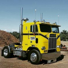 Coe White Freightliner custom