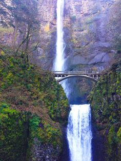 With some of the best waterfall hikes in the Pacific Northwest less than an hour from town Portland residents and visitors dont have to travel far to get close to nature. If you want to chase waterfalls in Portland Oregon. Hiking Near Portland Oregon, Backpacking Oregon, Oregon Road Trip, Portland Hikes, Oregon Coast Roadtrip, Travel Portland, Oregon Camping, Oregon Usa, Road Trips