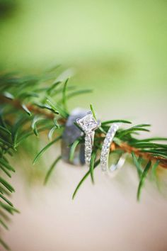 The rings! How beautiful! {An Affair to Remember}