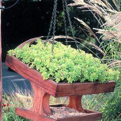 Green Roof Bird Feeder   Garden Decor & Garden Crafts