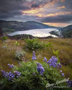 Daybreak in The Gorge | A blustery sunrise in the Columbia River Gorge.