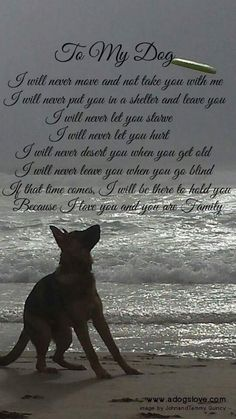 Wicked Training Your German Shepherd Dog Ideas. Mind Blowing Training Your German Shepherd Dog Ideas. Animal Quotes, Dog Quotes, I Love Dogs, Cute Dogs, Dog Poems, German Shepherd Puppies, German Shepherds, Yorkshire Terrier Puppies, Working Dogs