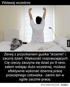 KWEJK.pl - Najlepszy zbiór obrazków z Internetu! Internet, Humor, Humour, Funny Photos, Funny Humor, Comedy, Lifting Humor, Jokes
