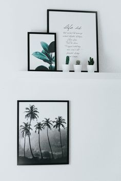 Scandinavian Design Poster mit Desenio, Greenery, Cactus > http://piecesofmara.com/scandinavian-design-poster-mit-desenio Plant, Plants, cactus, greenery, green, pictures, inspiration, inspo, interior, decor, deco, deko, decoration, home, house, inside, homebound