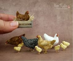 miniature chikens