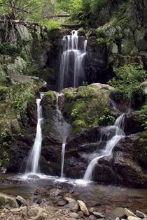 Shenandoah National Park, #Virginia