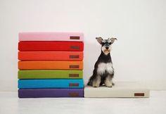 Muebles para mascotas, ¡lo último en decoración! Casa para perros con colchoneta