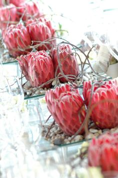 Protea in square mirror boxes Protea Wedding, Wedding Bouquets, Wedding Flowers, Purple Wedding, Modern Flower Arrangements, Table Arrangements, Protea Flower, My Flower, Floral Centerpieces
