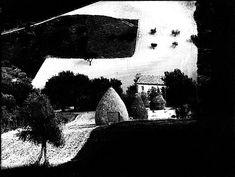 """wonderfulambiguity:    Mario Giacomelli,From the series """"Presa di coscienza sulla natura"""",1965"""
